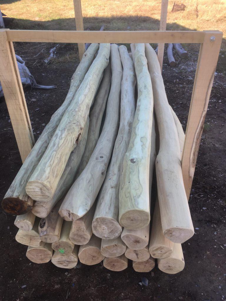 robiniapseudoacacia wood logs